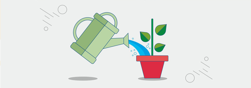 Are you nurturing your leads well?